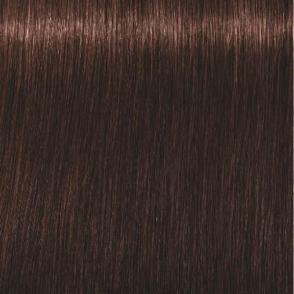 Igora Royal 4-68 Средний коричневый шоколадный красный Крем-краска, 60мл