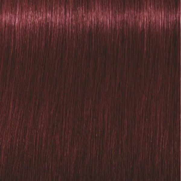 Igora Royal 4-88 Средний коричневый красный экстра Крем-краска, 60мл